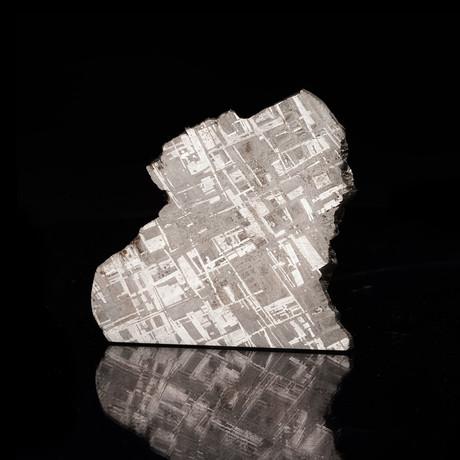Muonionalusta Meteorite Slice // Ver. 1