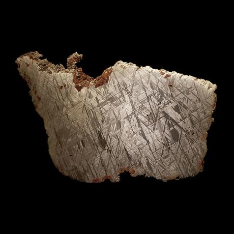 Muonionalusta Meteorite // Slice // Ver. III