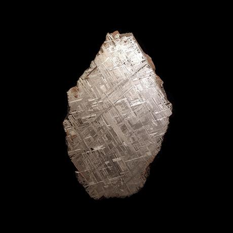 Muonionalusta Meteorite // End Cut // Ver. I