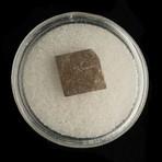 Muonionalusta Meteorite in Collectors Box