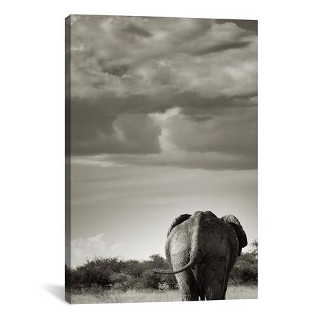 """B+W Returning Elephant (12""""W x 18""""H x 0.75""""D)"""