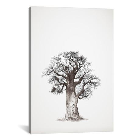 """Baobab Legacy V (12""""W x 18""""H x 0.75""""D)"""