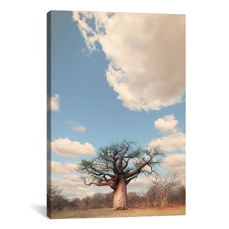 """Naye Naye Baobab I (12""""W x 18""""H x 0.75""""D)"""