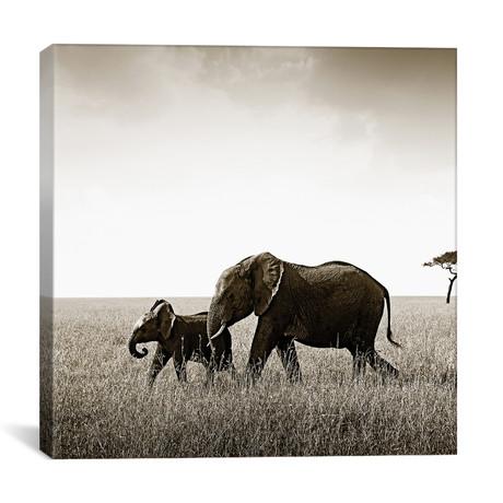 "Bonded Elephant (12""W x 12""H x 0.75""D)"