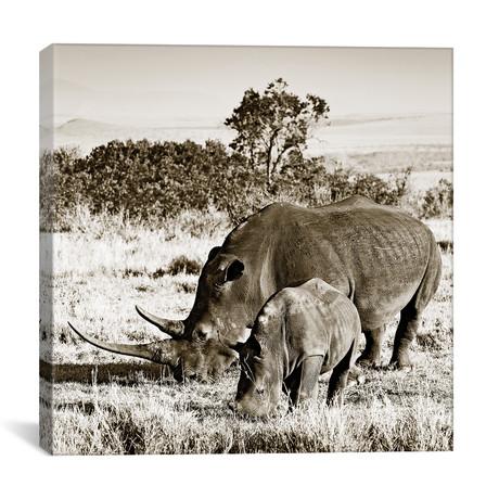 "Bonded Rhino (12""W x 12""H x 0.75""D)"