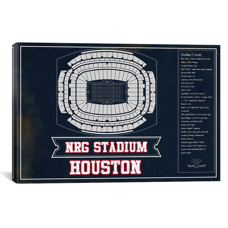 "Houston NRG Stadium // Team Colors (12""W x 18""H x 0.75""D)"