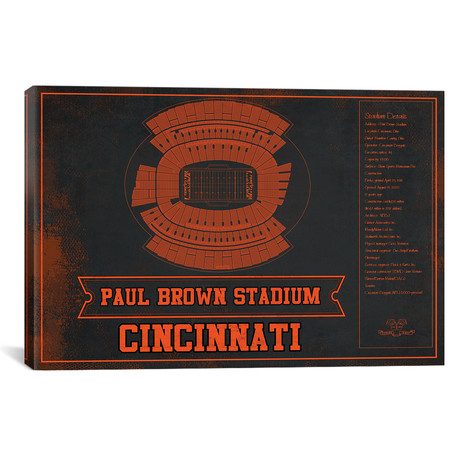 "Cincinnati Paul Brown Stadium // Team Colors (12""W x 18""H x 0.75""D)"
