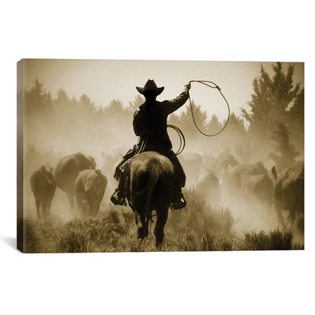 """Rope And Ride // Danita Delimont (12""""W x 18""""H x 0.75""""D)"""