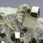Natural Pyrite Cubes on Matrix