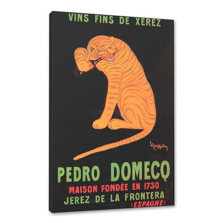 Pedro Domecq wines