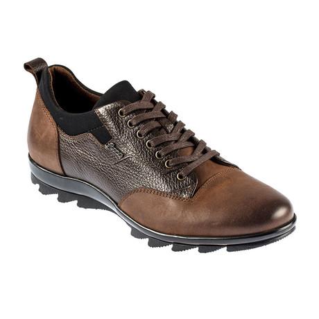 Everest Sport Shoe // Brown (Euro: 37)