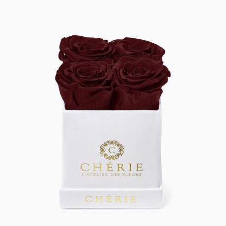 Burgundy Roses // White Matte Mini Box