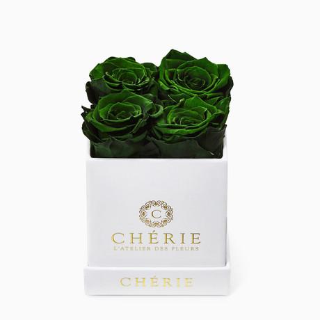 Green Roses // White Matte Mini Box