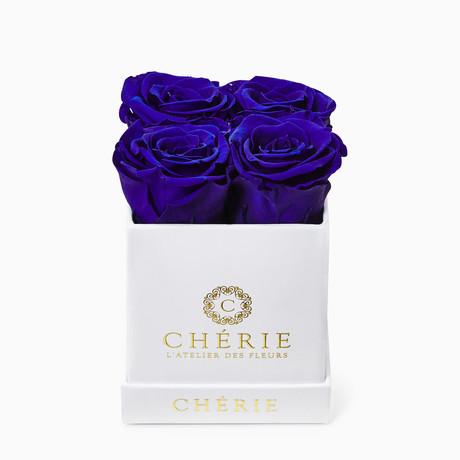 Blue Roses // White Matte Mini Box