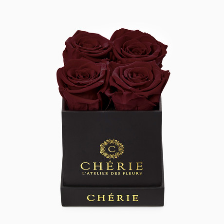 Burgundy Roses // Black Soft-Touch Mini Box