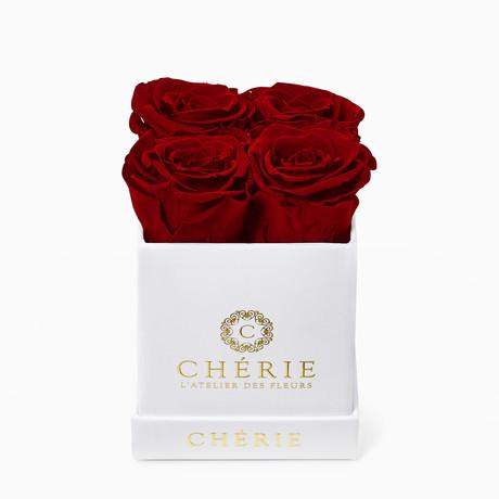 Red Roses // White Matte Mini Box