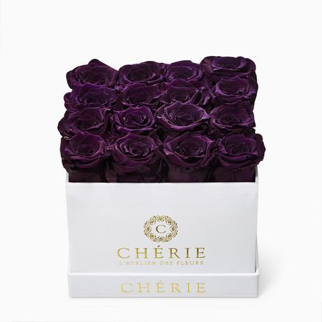 Purple Roses // White Matte Box