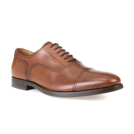 Hampstead Dress Shoes // Cognac (Euro: 39)