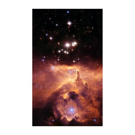"""Pismis 24 + NGC 6357 (10""""W x 16""""H)"""