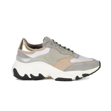 Kayo Sneaker // Gray + Gold (Euro: 40)