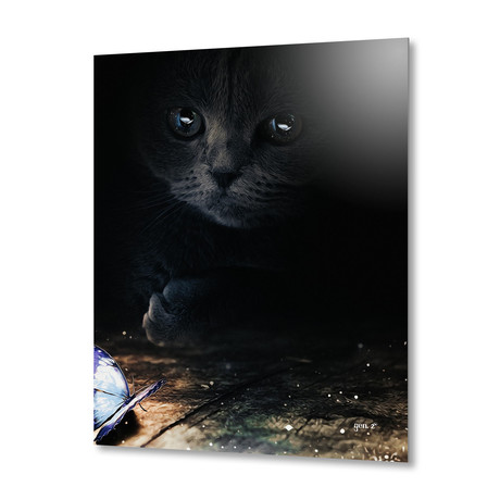 """Cat Looking At A Blue Butterfly // Aluminum Print (16""""W x 24""""H x 1.5""""D)"""