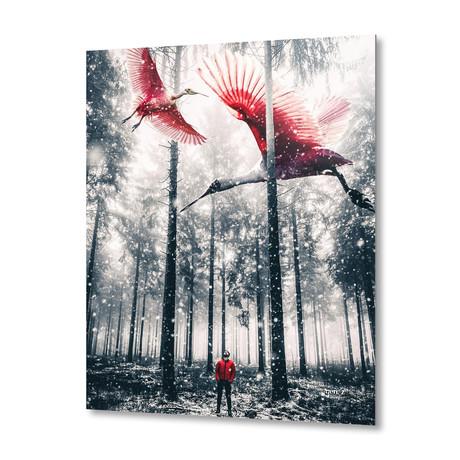 "Red Birds In Winter // Aluminum Print (16""W x 16""H x 1.5""D)"