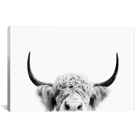 "Peeking Cow In Black & White // Sisi & Seb (18""W x 12""H x 0.75""D)"