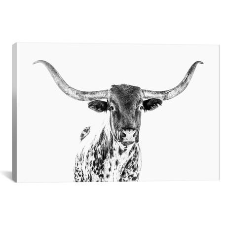 "Longhorn Bw // Teri James (18""W x 12""H x 0.75""D)"