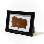 Egyptian Mummy Wrappings In Frame // C. 900-700 BC