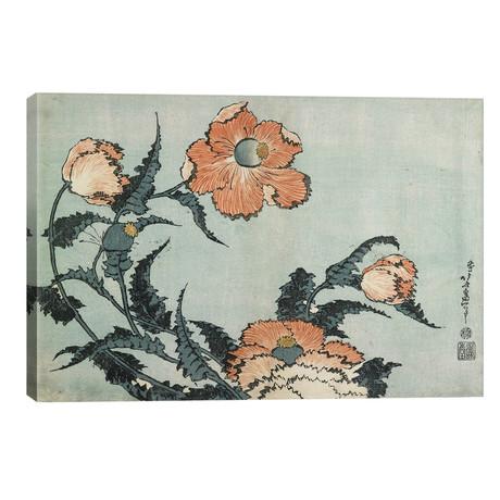 "Poppies, C.1832 (18""W x 12""H x 0.75""D)"