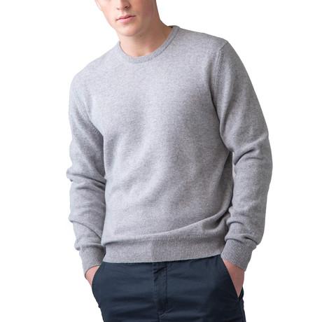 Cashmere Crew Neck Sweater // Silver (XS)