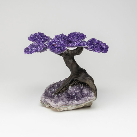 The Protection Tree I // Genuine Amethyst Tree + Amethyst Matrix // X-Large
