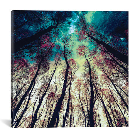 "Nordic Lights // Riza Peker Canvas Print (18""W x 18""H x 0.75""D)"