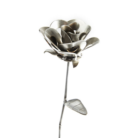 Single Immortal Steel Rose