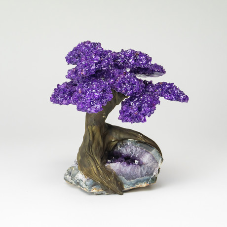 Large // The Protection Tree // Amethyst Clustered Gemstone Tree + Amethyst Matrix