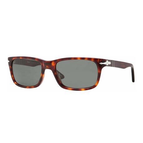 Men's 3048 Wayfarer Sunglasses // Havana + Green