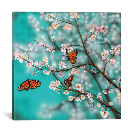 "Butterflies And Blossoms (12""W x 12""H x 0.75""D)"
