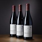 Migration Single Vineyard Pinot Noir // Set of 3