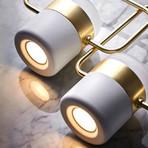 Ferrao Pendant Light // Gold