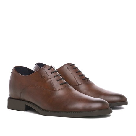 Treviso Goodyear Oxford Shoe // Brown (US: 7)
