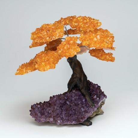 The Money Tree // Genuine Citrine Tree + Amethyst Matrix // Large