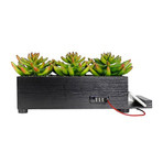 PowerPlant Succulent Charging Station // Black