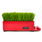 PowerPlant 4-Port USB Charging Station // Red