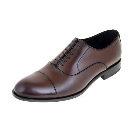 Detroit Oxford Shoe // Brown (Euro: 40)