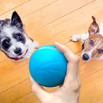 Smart Interactive Pet Toy // Wicked Ball (Blue)