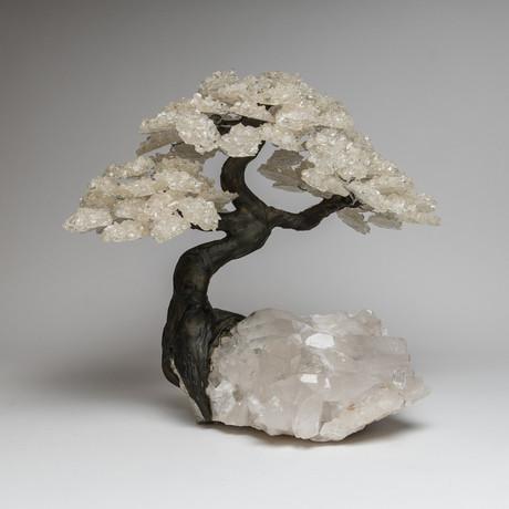 White Quartz Clustered Gemstone Tree + Clear Quartz Crystal Matrix