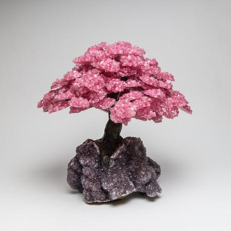 The Love Tree // Rose Quartz Clustered Gemstone Tree + Amethyst Druzy Crystal Matrix