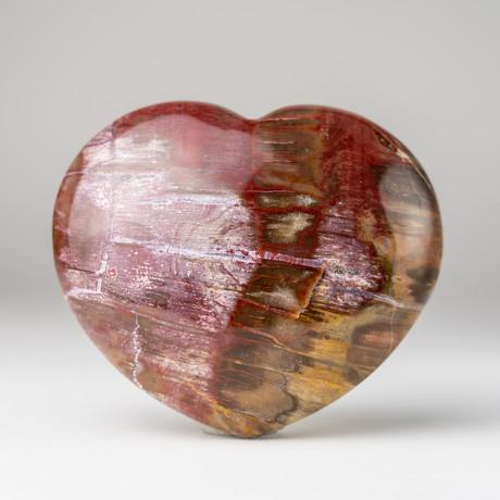 Petrified Wood Heart + Acrylic Display Stand