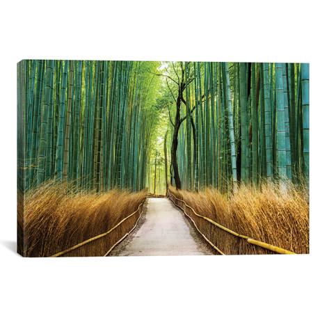 """Arashiyama Ancient Bamboo Forest // Susanne Kremer (18""""W x 12""""H x 0.75""""D)"""