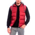 Shelton Vest // Bordeaux (S)